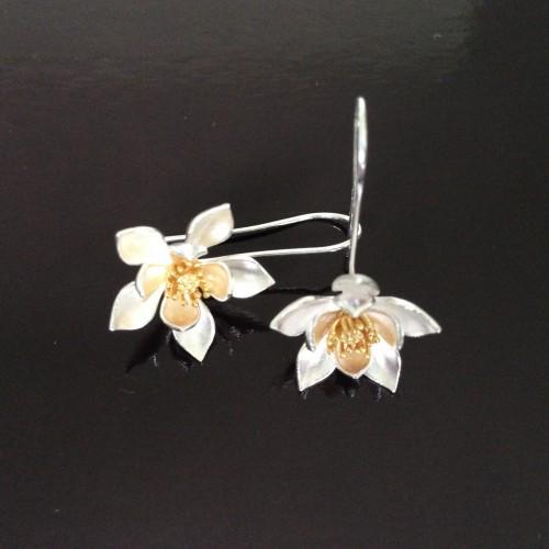 zilveren oorringen 6 cm